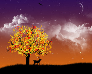 Autumn_Night_by_s3vendays